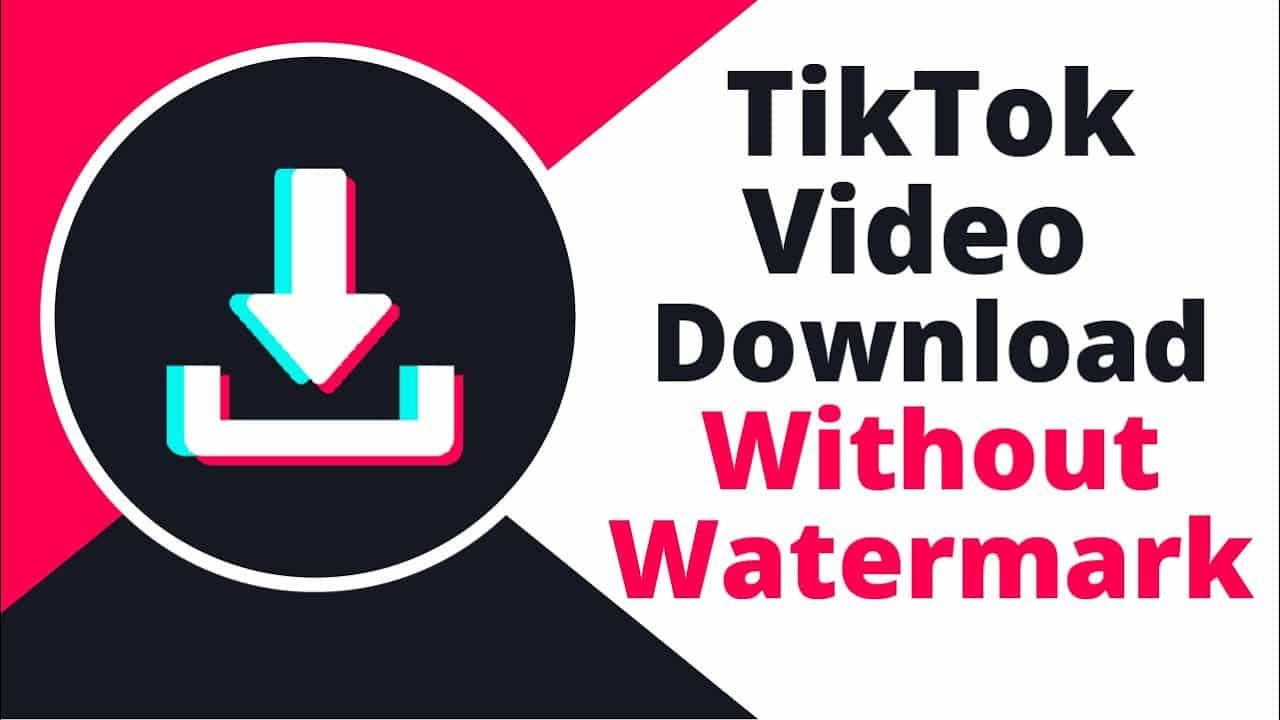TikTok-Downloader